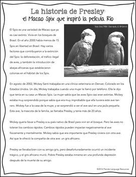 La Historia de Presley: the Spix Macaw that inspired the movie Río