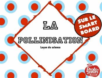 La Pollinisation // Leçon sur Notebook