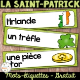 La Saint-Patrick - 28 mots de vocabulaire GRATUIT! French St. Patrick's Day