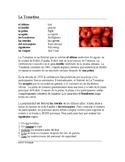 La Tomatina Festival Lectura y Cultura: Spanish Reading (Ud. Commands) SUB PLAN