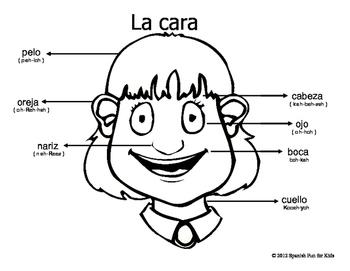 La cara (the face)
