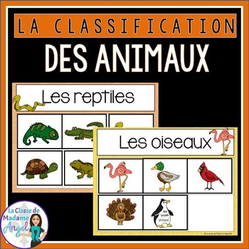 La classification des animaux - Animal Sorting Center in French