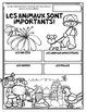 La classification des animaux BUNDLE