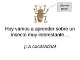 La cucaracha- el presente perfecto