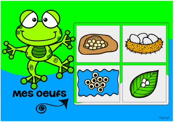 FRENCH BOOM CARDS • La grenouille et son habitat
