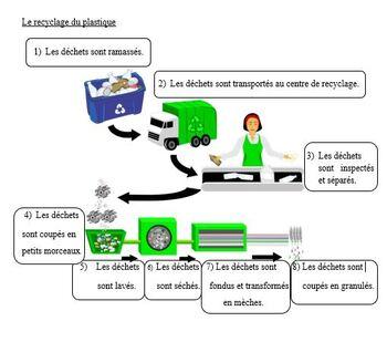 La pollution plastique des océans, French Immersion, (#173)