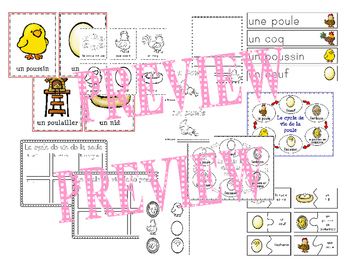 Le cycle de vie de la poule - French Chickens (life cycle, literacy and science)
