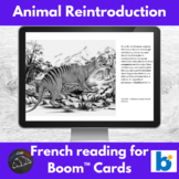 La réintroduction des animaux- reading for French learners - Boom Cards™ version