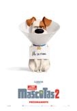 La vida secreta de tus mascotas 2 | The Secret Life of Pets 2 in SPANISH