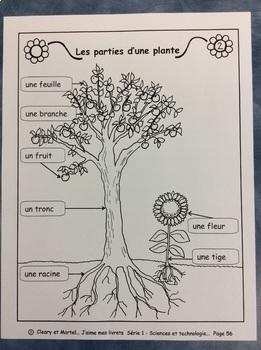 La vie d'une petite graine- FRENCH Work booklet- Grade 1 and 2- Plants