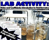Lab Activity: Introduction to Stoichiometry