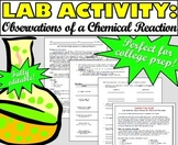 Lab Activity: Observations of a Chemical Reaction