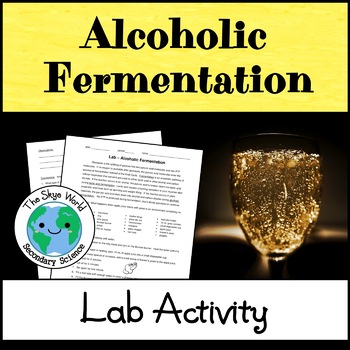 Lab - Alcoholic Fermentation