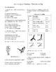High School Biology Lab - Classification - Using a Dichotomous Key