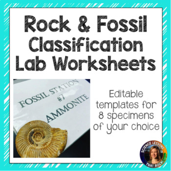 Rock And Fossil Classification Labs By Science Lessons That Rock