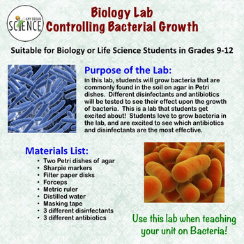 Bacteria Lab: Controlling Bacterial Growth (Disinfectants and Antibiotics)