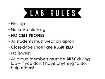 Lab Duties/Rules