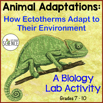 Animal Adaptations: How Ectotherms Adapt to Their Environment