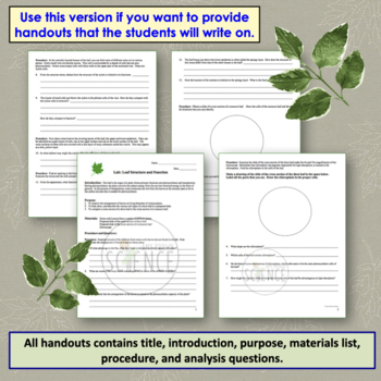 Leaf Structure and Function Lab