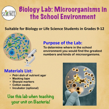 Bacteria Lab: Microorganisms in the School Environment