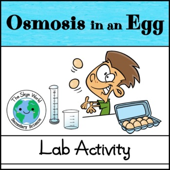 Lab - Osmosis in an Egg