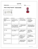 Lab Plan- Fruit Smoothie