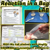 Lab: Reaction in a Bag