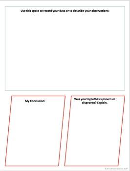 Lab Report Graphic Organizer