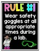 Science Safety Posters!