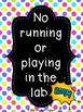 Lab Safety Posters with Multi-Color Polkadot Border