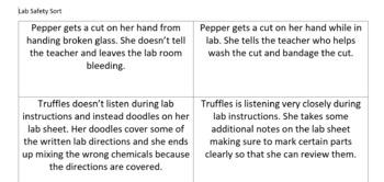 Lab Safety Sort and Worksheet