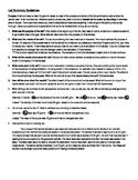 Lab Summary Guidelines