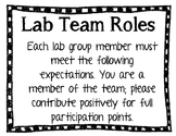 Lab Team Roles in Doodle