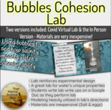 Lab: Using Bubbles to Visualize & Measure Salts Impact on