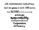 Lab or Group Work Performance Evaluation