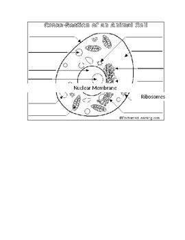 Label Cell