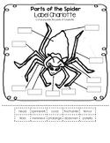 Label Charlotte - Parts of the Spider Worksheet