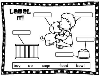Label It!  A Picture Labeling Activity