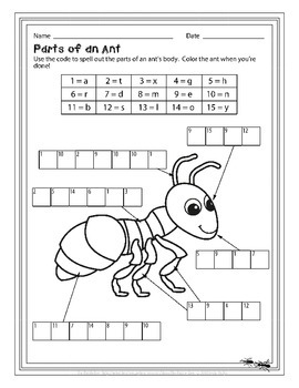 Label It! Parts of Things - Puzzles for Early Elementary