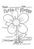Label Parts of a Flower Worksheet