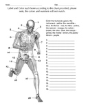 Label - Skeleton of the Running Man
