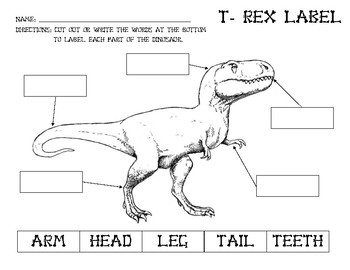 Label a Dinosaur (T-Rex)