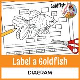 Label a Fish Diagram - Parts of a Fish Labeling - Goldfish