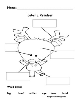 Label a Reindeer