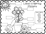 Label a Spring Picture