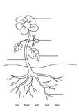 LABEL A PLANT