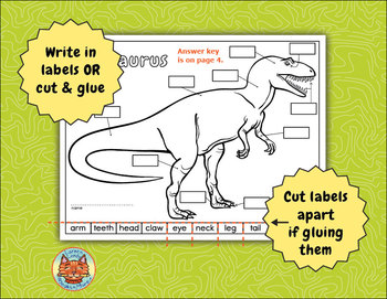 label a dinosaur body parts diagram by loreen leedy tpt