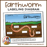 Label an Earthworm Diagram - Parts of an Earthworm Labelin