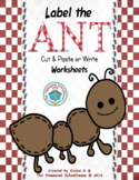 Label the Ant Cut and Paste Worksheets