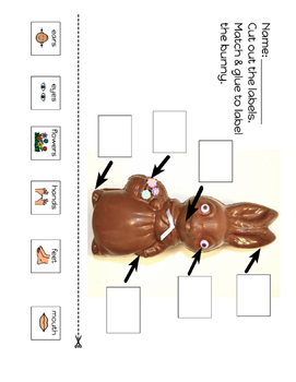 Label the Chocolate Bunny